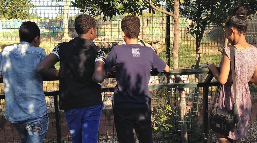 IMG_6647 zoo