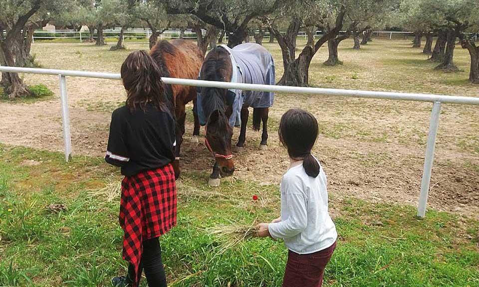Metadrasi - step2school metadrasi earthday a